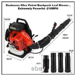 80CC Backpack Leaf Blower 2-stroke Gas Powered High Performance 900 CFM 3.5KW US